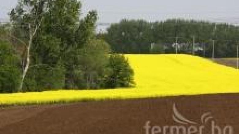 Национални стандарти, определящи условията за поддържане на земята в добро земеделско и екологично състояние