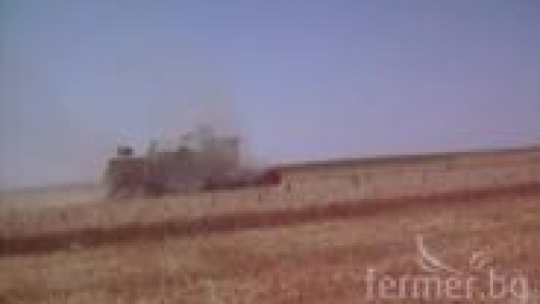 Жътва на пшеница 2012