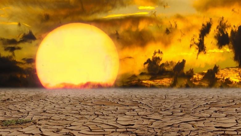 Кое е по-опасно за реколтата - обилните валежи или сушата?