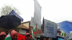Десет организации искат незабавно оставката на земеделския министър