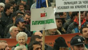 Какво искат протестиращите биопроизводители? - Agri.bg