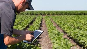 Умни сензори помагат в обработката на земеделски масиви