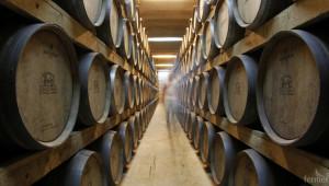 Перспективи за българското вино