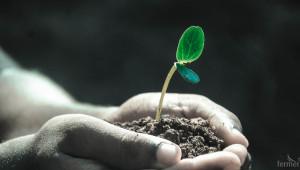 Идва ли краят на медните препарати в биоземеделието? - Agri.bg