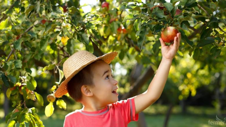 Светът на плодовете и зеленчуците вече не е същият