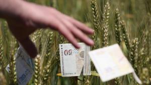 Пшеницата и ечемикът поскъпват