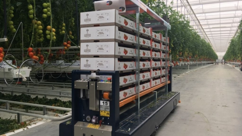Втора част: 9 иновации за оранжерии