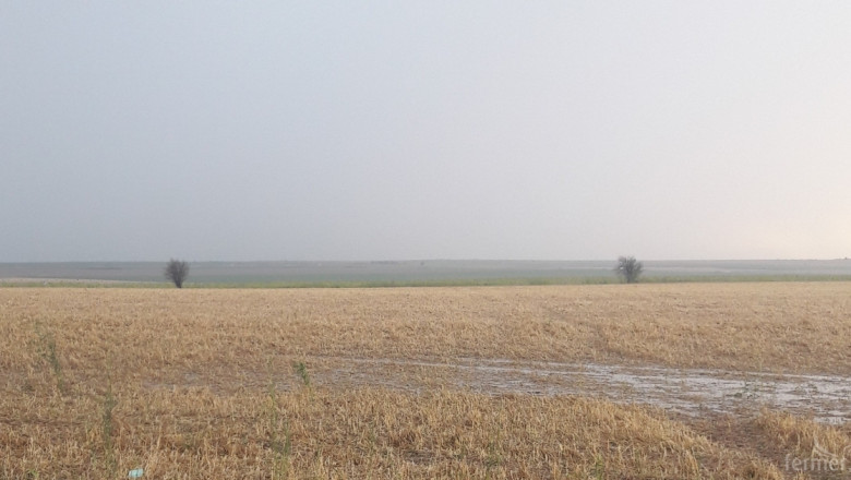 Градушка унищожи ниви край Чирпан