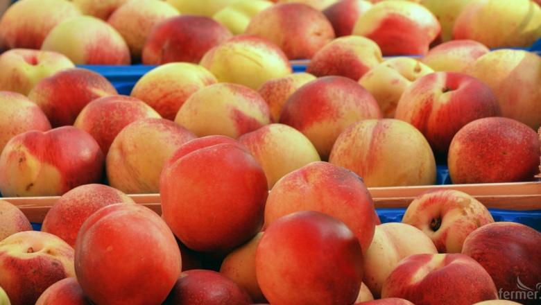 Приключва приемът за извънредно подпомагане на овощарите
