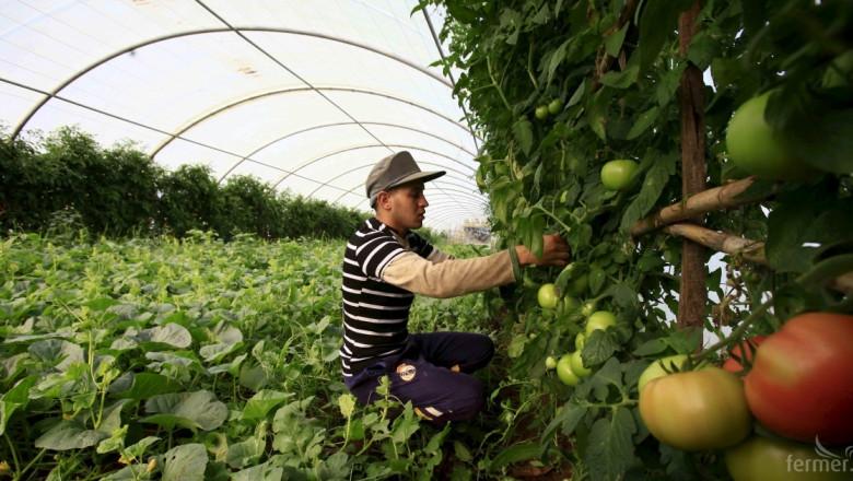 Намаляват хората в българското земеделие