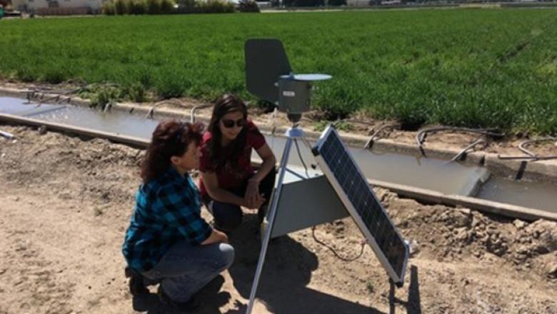 Нова технология прогнозира болестите по посевите