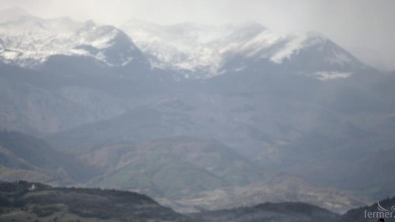 Силен интерес към знака Планински продукт