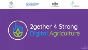 Агроиновации: Софтуер за по-добро управление на животновъдни кооперативи