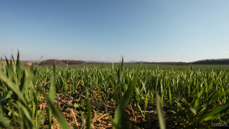 Агрометеорология: Повишение на температурите и дъжд