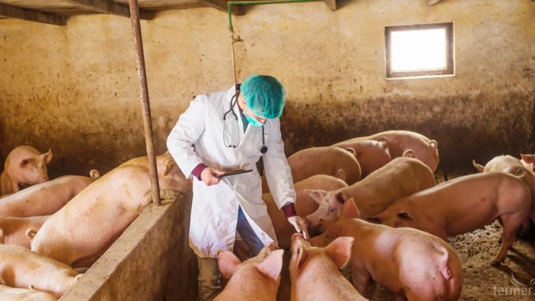 Консумацията на свинско месо се е удвоила през последните десет години
