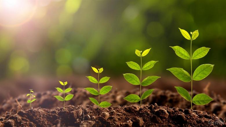 Проект помага за повишаване на конкурентоспособността на фермерите