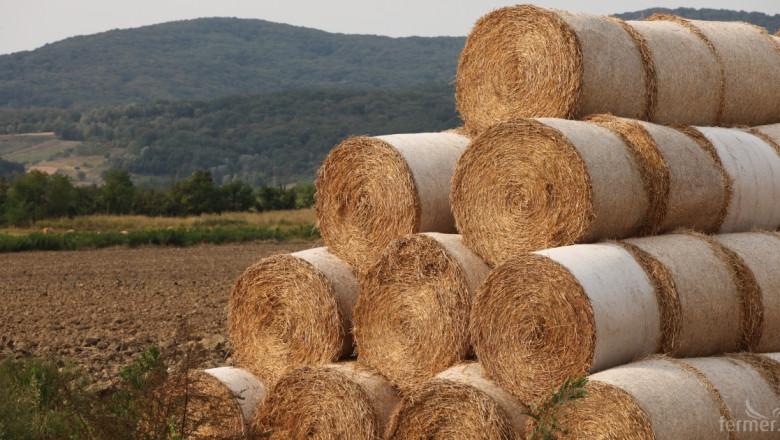 Световното производство на комбинирани фуражи надхвърли 1 млрд. тона
