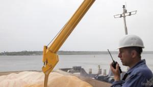 Пшеницата отново поевтиня заради рекордни запаси