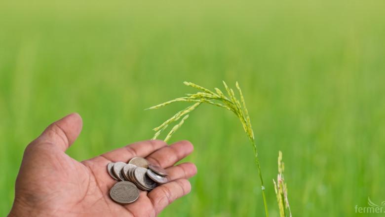Производител: Малко са фермерите, които не се трудят само за европейските пари