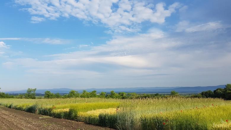 Биологично земеделие в Институт по земеделие – Карнобат