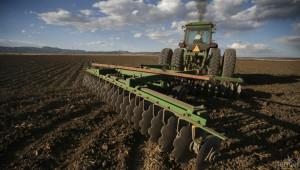 Агроминистерството: Внимавайте с наемането на земеделски земи
