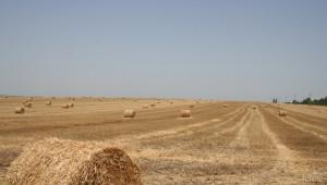 Анализ: Земеделие под високо налягане