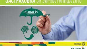 За зимната рапична кампания, Еуралис Семена, предлага застраховка за своите клиенти