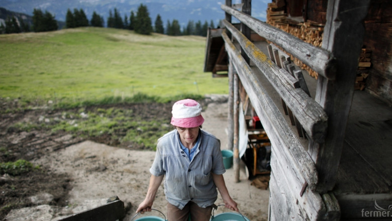 Десислава Танева: За месец май цената на млякото е 0.49 лв за литър