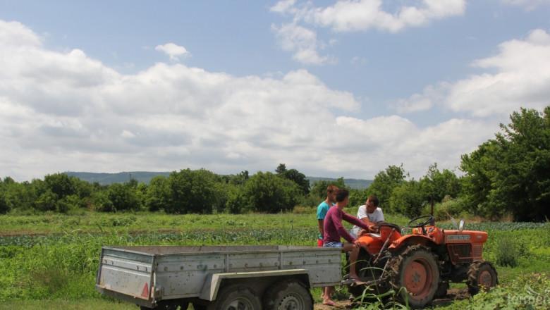 Наредбата на мярката за малките стопанства - 6.3 ще е готова в началото на април (ОБНОВЕНА)