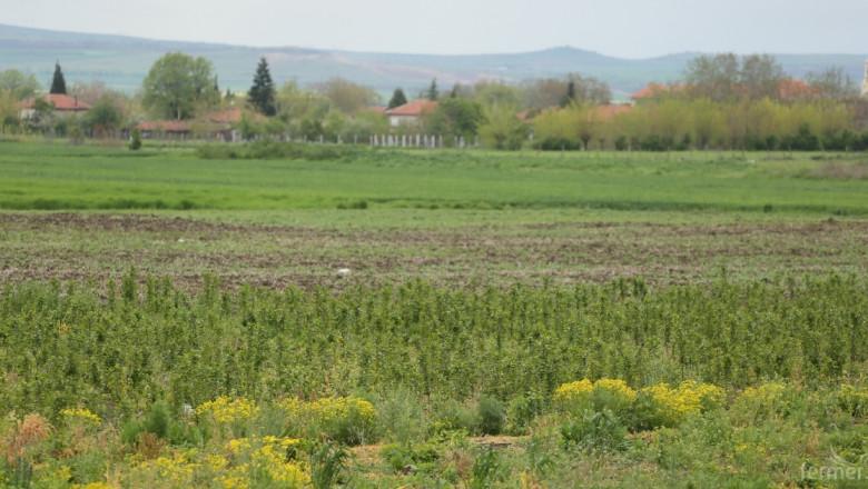 През 2016 г. няма да заявяват нови дейности за контрол на почвената ерозия и за зимуващи гъски