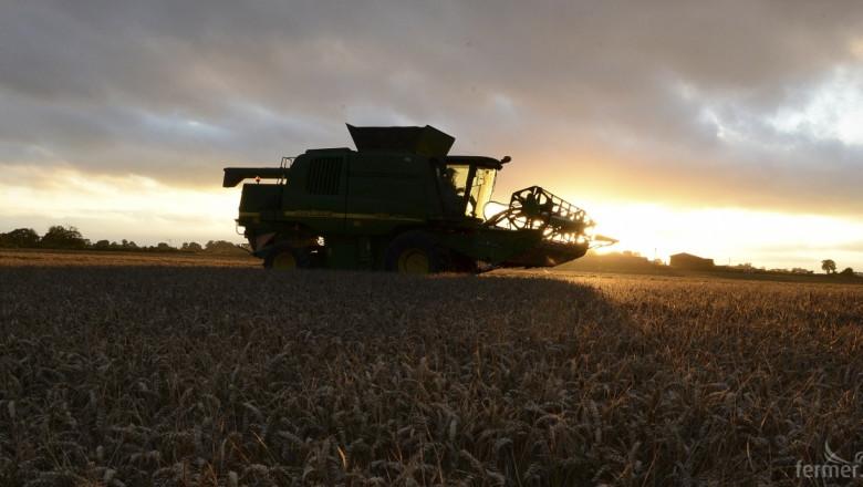 Експерти прогнозират силна зърнена реколта в Европа през 2016