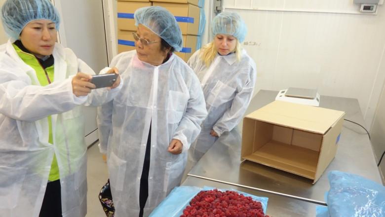 Български сортове малини впечатлиха Китай (СНИМКИ)