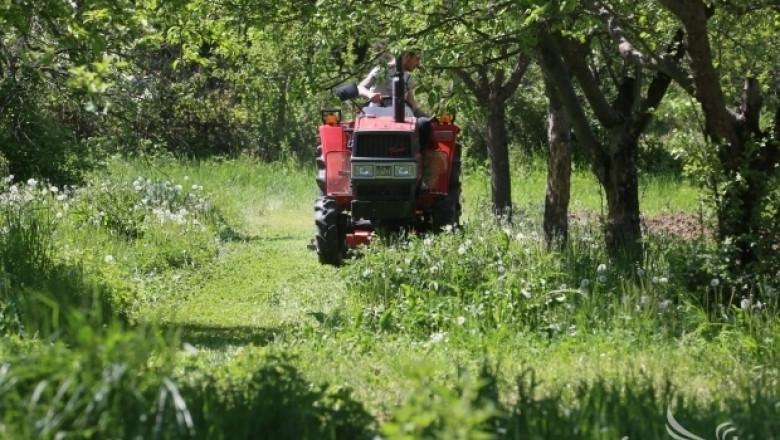 МЗХ публикува Заповед за отваряне на прием по 6.1 Млад фермер