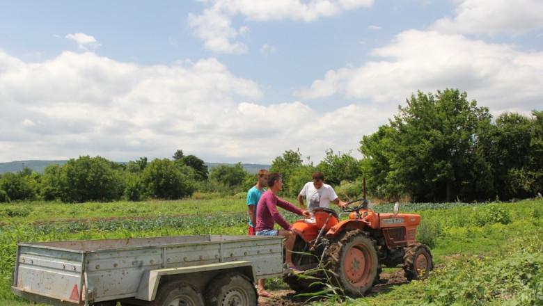 На 15 юни МЗХ ще публикува заповед за отваряне на мярка 6.1 Млад фермер (ОБНОВЕНА)
