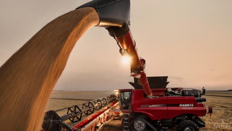 Цената на пшеницата стартира на зелено от 250 лв./тон