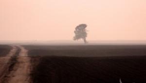 Субсидии за Агроекология, необлагодетелствани райони и Натура 2000 през декември (ВИДЕО)