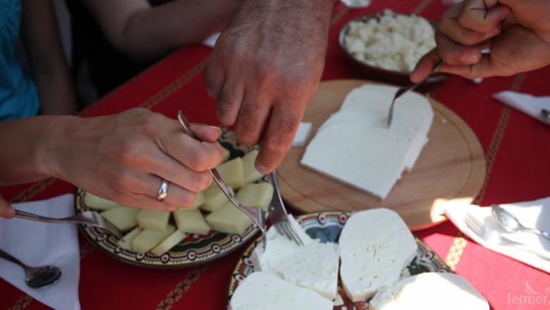 ЕК одобри български проект за промоция на овче месо и мляко в Европа (ВИДЕО)