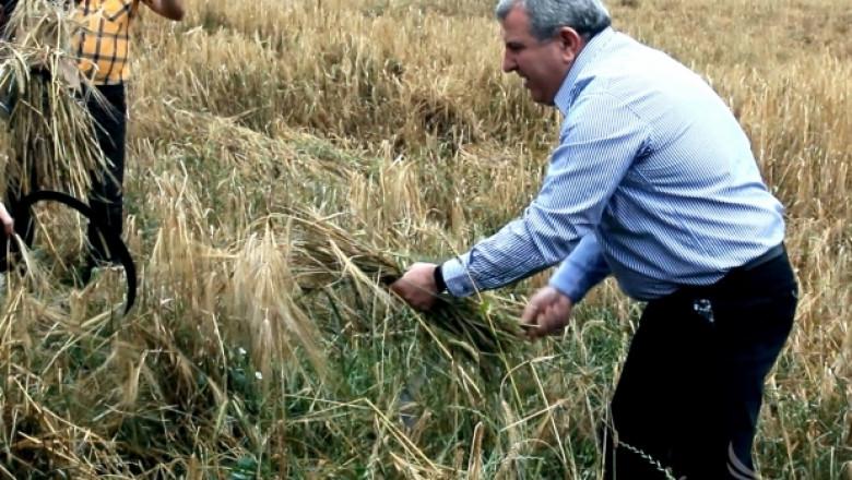 Димитър Греков открива жътвата на ръж край Пловдив