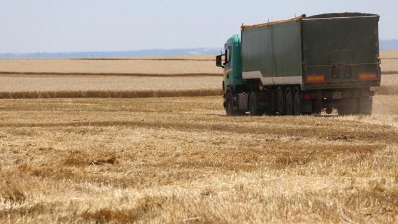 Ангел Вукодинов (НАЗ): Удря ни бича на ниските изкупни цени на зърното!