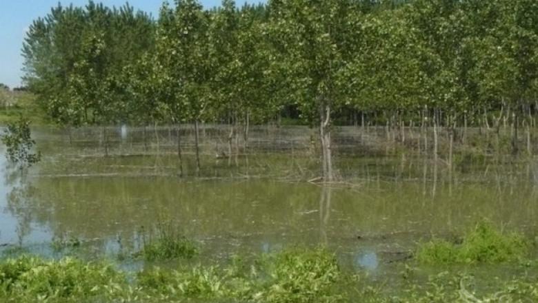 МОСВ предупреждава за възможни нови локални поройни наводнения
