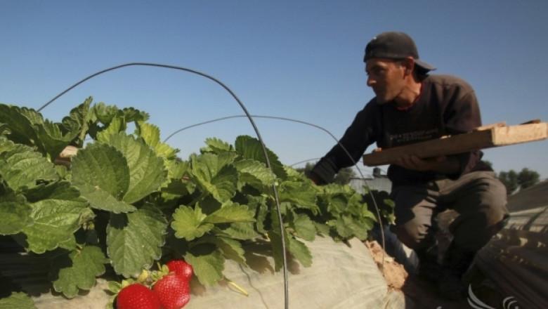 ДФЗ публикува имената на одобрените бенефициенти по Млад фермер (СПИСЪК)