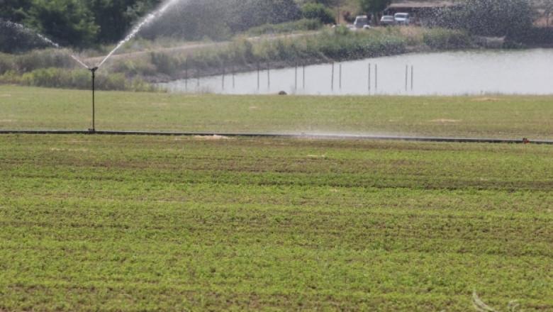 1/3 от потреблението на вода в Европа е за земеделие