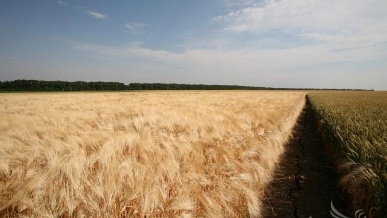 МЗХ допълни националните стандарти за поддържане на земята в добро състояние