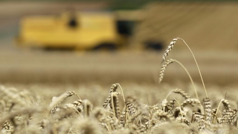 ЕС: Производството на храни ще расте заради износ и производство на биогориво