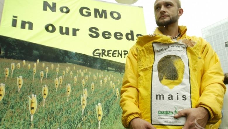 Европейският парламент гласува днес против ГМО царевицата 1507