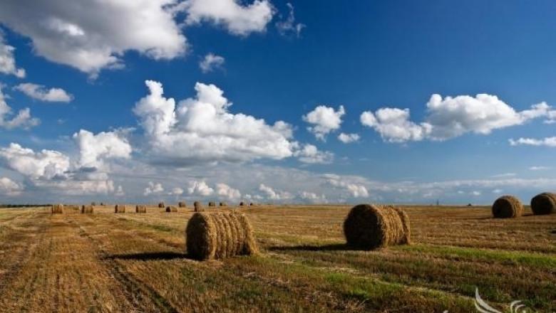 Доклад на ЕСП: Не е ясно дали субсидиите за земеделие се използват правилно