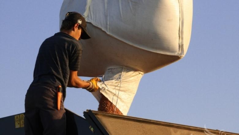 Почти половин милион декара с пшеница засяха  стопаните в Шуменско