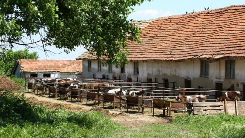 Промени в Закона за животновъдство облекчават административната тежест
