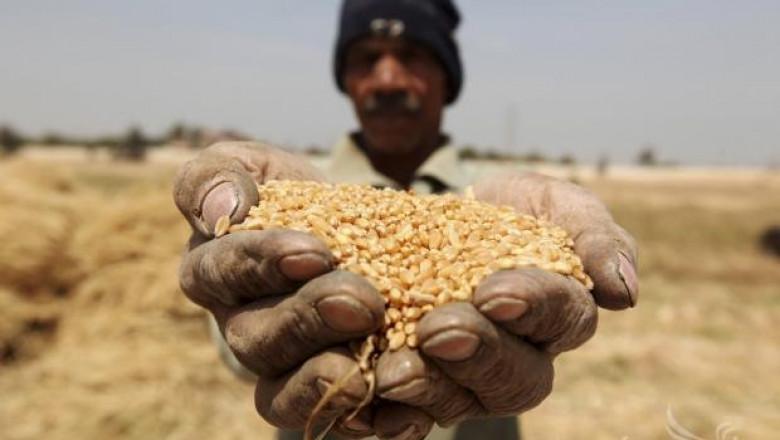 90 млн. тона храна се изхвърлят годишно в Европа
