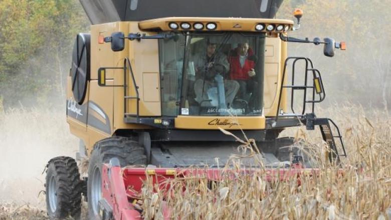 591 кг/дка е средният добив от царевица в Добруджа
